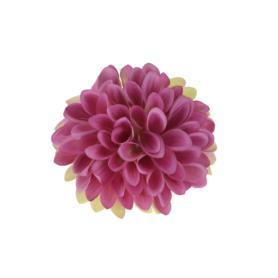 Cynia główka kwiatowa 52049-11