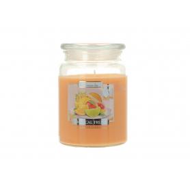 Świeca zapachowa OWOCE TROPIKALNE SND99-71