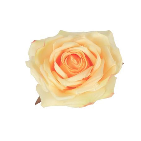 Róża główka kwiatowa 52425-13