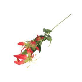 Gloriosa gałązka pojedyncza 55632-2942