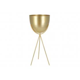 Osłonka SWEN złota HTOP7623