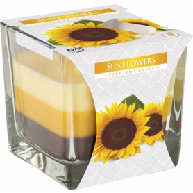 Świeca zapach.trójkolor. słoneczniki SNK80330