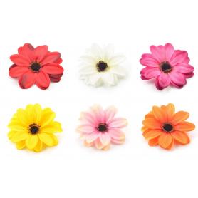 Dalia główka kwiatowa