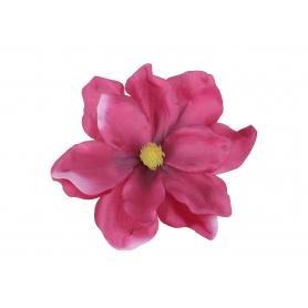 Magnolia główka kwiatowa 53988 KPW7045