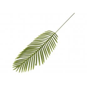 Liść Palmy XXL