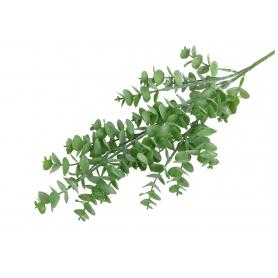 Eukaliptus gałązka  51564 SD11604GR