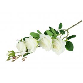 Róża gałązkowa 90cm