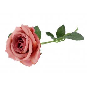 Róża pojedyncza velvet 51616C5