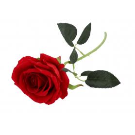 Róża welurowa 60/480 59401 E51