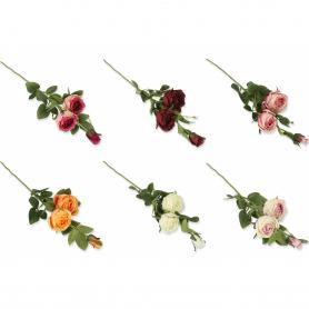 Róża gałązka  56104