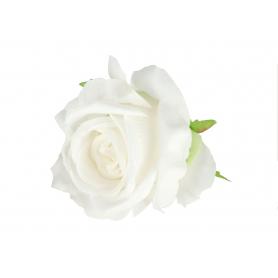Róża główka kwiatowa 50026white