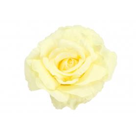 Róża główka kwiatowa 54912 KPW2405