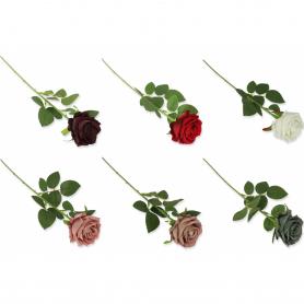 Róża VELVET pojedyncza 51431cream