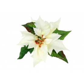 Gwiazda Betlejemska główka kwiatowa 59427-WH