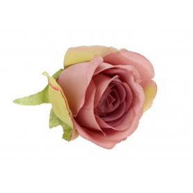 Róża lekko rozwinięta główka kwiatowa