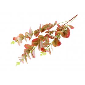 Eukaliptus gałązka pojedyncza 57420