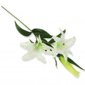 Lilia gałązka pojedyncza 50961