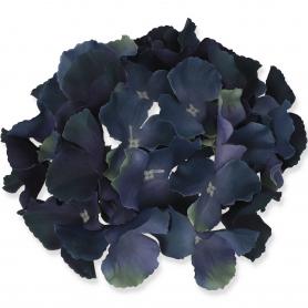 Hortensja główka kwiatowa 5097710