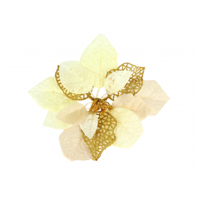Gwiazda Betlejemska główka kwiatowa 56662gold