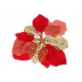 Gwiazda Betlejemska główka kwiatowa 56662red