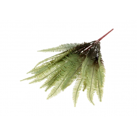 Paproć zielona w bukiecie 50197 PUK1008
