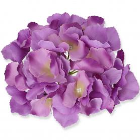 Hortensja główka kwiatowa 509775