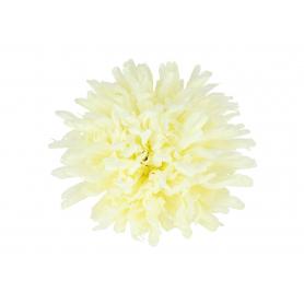 Chryzantema główka kwiatowa 54986 361-027