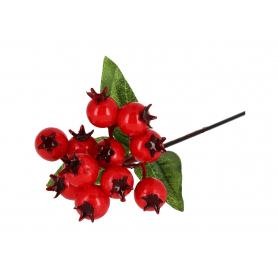 Dodatek owoc dzikiej róży  55235