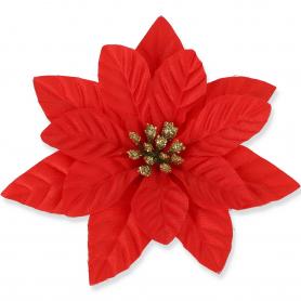 Gwiazda betlejemska główka kwiatowa 59483red