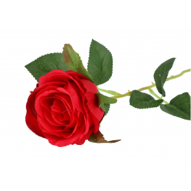 Róża gałązka pojedyncza 55617