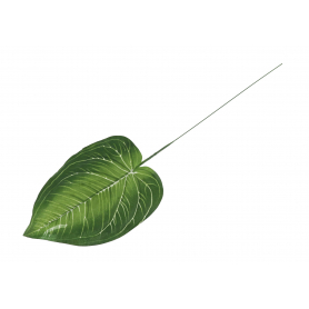 Liść Evergreen liść 46cm 55974