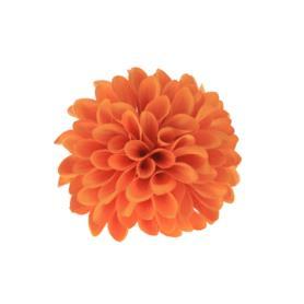 Cynia główka kwiatowa 52049-17