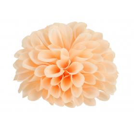 Cynia główka kwiatowa 52049-9