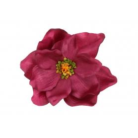 Magnolia główka kwiatowa.