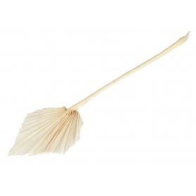 Susz naturlany Palm Spear bielony  0902