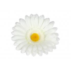 Gerbera główka kwiatowa 53896cr192 1588