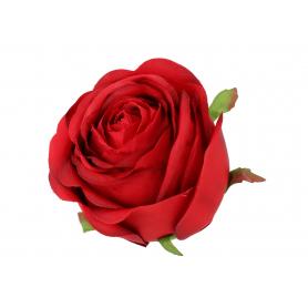 Róża główka kwiatowa 57664 SUN564
