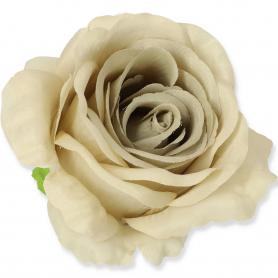 Róża główka kwiatowa 5439040 LQ24