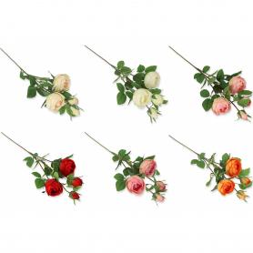 Róża gałązka  55770