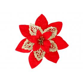 Gwiazda Betlejemska główka kwiatowa 55798