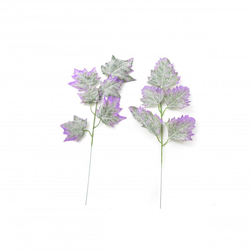 Liść klonu z fioletowymi końcówkami