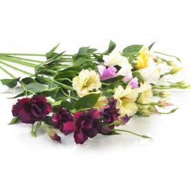 Искусственные цветы: эустома одиночная